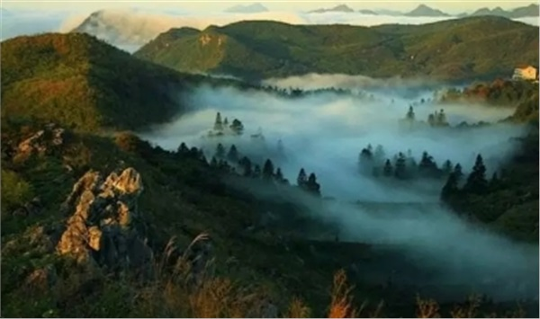 云台山神仙岩风景区、云上茶园、云上体验中心一日游