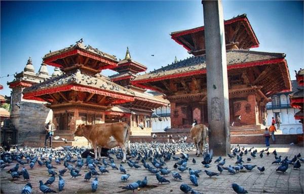 纯净天堂·遇见尼泊尔8天7晚