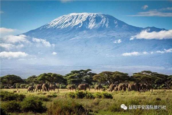 发现非洲体验之旅肯尼亚10游