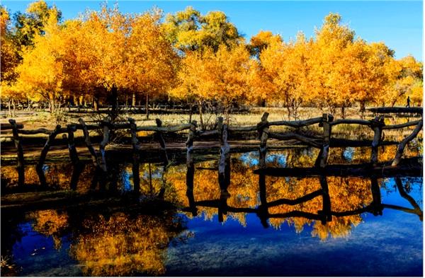 天池、吐鲁番、罗布人村寨、博斯腾湖、轮台塔里木胡杨林、天山神秘大峡谷双飞8日游