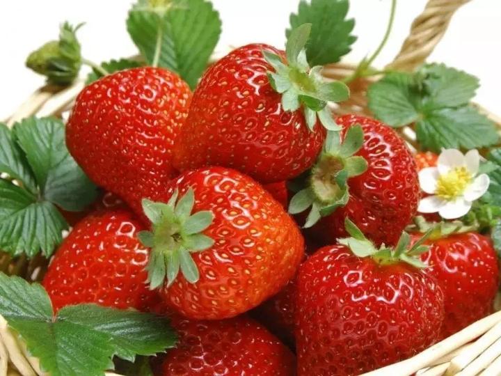 浏阳周洛大峡谷、王震故居+摘草莓一日游